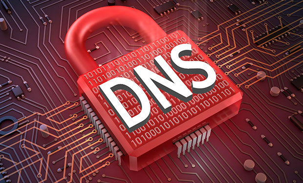 DNS Security Services Provider in India